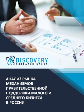Маркетинговое исследование - Анализ рынка механизмов правительственной поддержки малого и среднего бизнеса в России