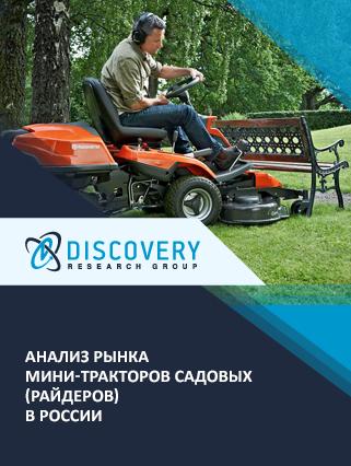 Анализ рынка мини-тракторов садовых (райдеров) в России
