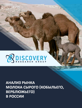Анализ рынка молока сырого (кобыльего, верблюжьего) в России