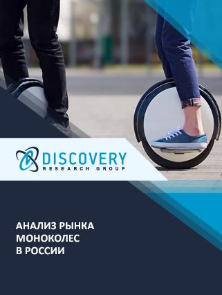 Маркетинговое исследование - Анализ рынка моноколес в России