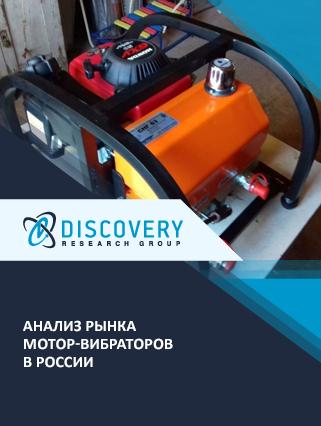 Анализ рынка мотор-вибраторов в России