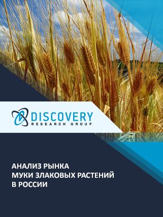 Маркетинговое исследование - Анализ рынка муки злаковых растений в России