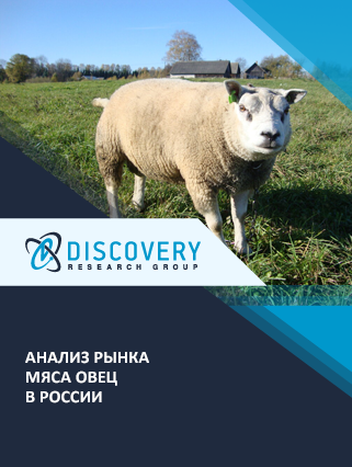 Анализ рынка мяса овец в России
