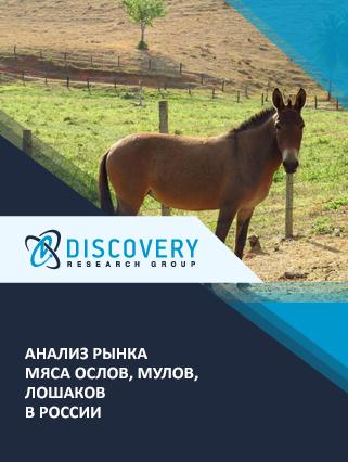Маркетинговое исследование - Анализ рынка мяса ослов, мулов, лошаков в России