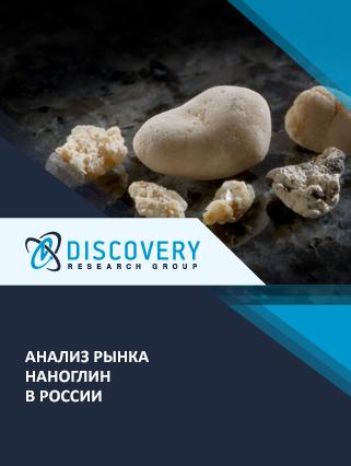 Маркетинговое исследование - Анализ рынка наноглин в России