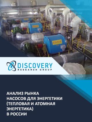 Маркетинговое исследование - Анализ рынка насосов для энергетики (тепловая и атомная энергетика) в России