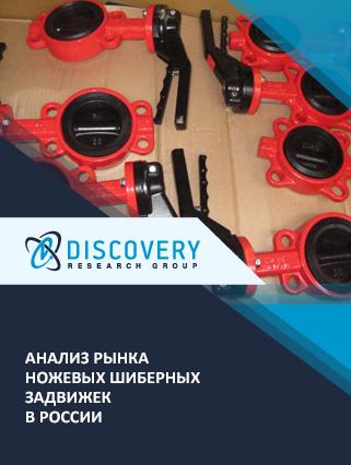 Маркетинговое исследование - Анализ рынка ножевых шиберных задвижек в России