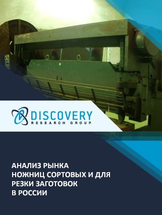 Маркетинговое исследование - Анализ рынка ножниц сортовых и для резки заготовок в России