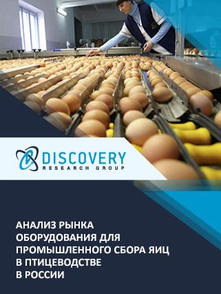 Маркетинговое исследование - Анализ рынка оборудования для промышленного сбора яиц в птицеводстве в России