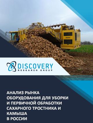 Маркетинговое исследование - Анализ рынка оборудования для уборки и первичной обработки сахарного тростника и камыша в России