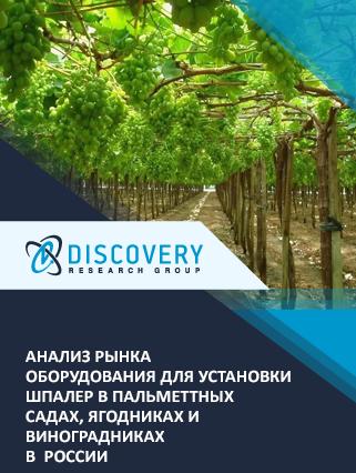 Маркетинговое исследование - Анализ рынка оборудования для установки шпалер в пальметтных садах, ягодниках и виноградниках в России