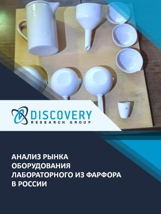 Маркетинговое исследование - Анализ рынка оборудования лабораторного из фарфора в России
