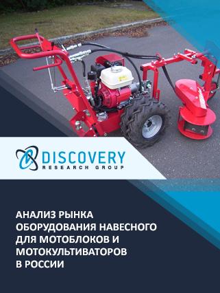 Маркетинговое исследование - Анализ рынка оборудования навесного для мотоблоков и мотокультиваторов в России