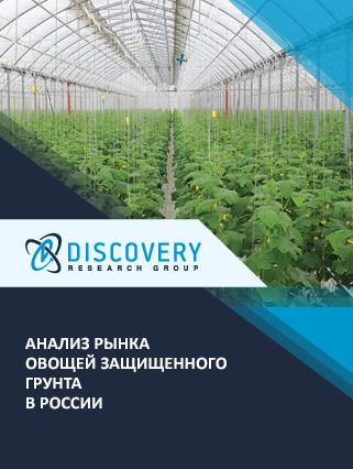 Анализ рынка овощей защищенного грунта в России