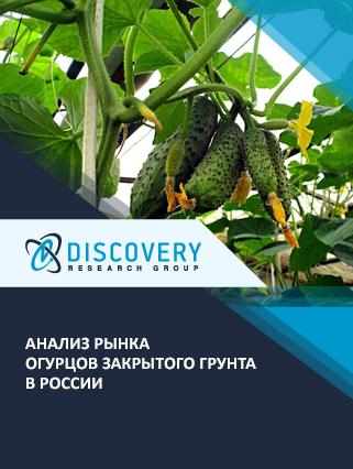 Маркетинговое исследование - Анализ рынка огурцов закрытого грунта в России