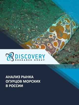 Анализ рынка огурцов морских в России
