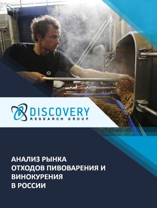 Маркетинговое исследование - Анализ рынка отходов пивоварения и винокурения в России