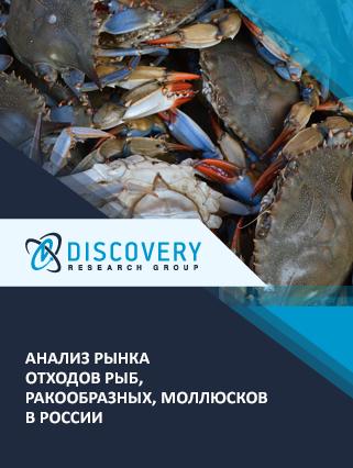 Маркетинговое исследование - Анализ рынка отходов рыб, ракообразных, моллюсков в России