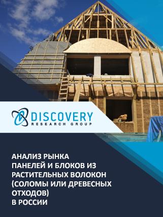 Маркетинговое исследование - Анализ рынка панелей и блоков из растительных волокон (соломы или древесных отходов) в России