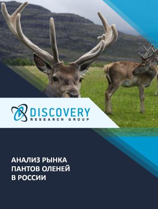 Маркетинговое исследование - Анализ рынка пантов оленей в России