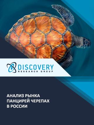 Маркетинговое исследование - Анализ рынка панцирей черепах в России