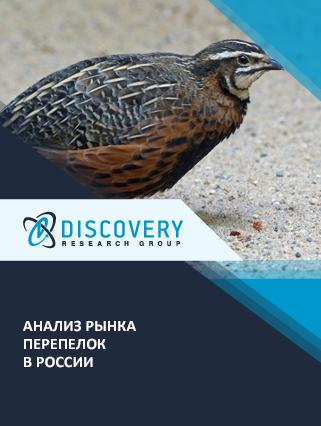 Маркетинговое исследование - Анализ рынка перепелок в России