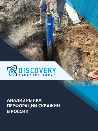 Маркетинговое исследование - Анализ рынка перфорации скважин в России