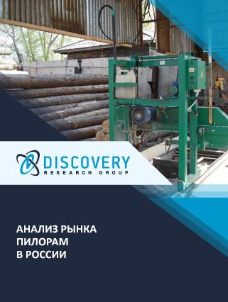 Маркетинговое исследование - Анализ рынка пилорам в России