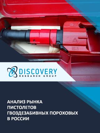 Маркетинговое исследование - Анализ рынка пистолетов гвоздезабивных пороховых в России
