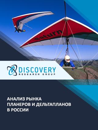 Маркетинговое исследование - Анализ рынка планеров и дельтапланов в России