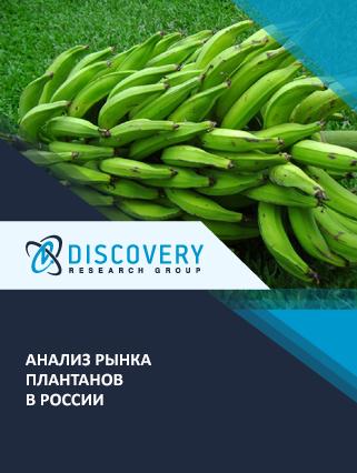 Маркетинговое исследование - Анализ рынка плантанов в России