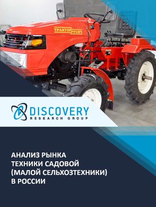 Анализ рынка техники садовой (малой сельхозтехники) в России