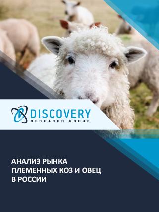 Маркетинговое исследование - Анализ рынка племенных коз и овец в России