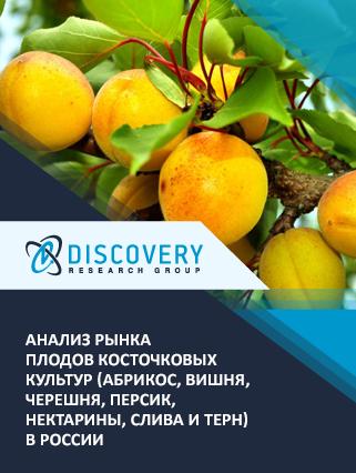 Маркетинговое исследование - Анализ рынка плодов косточковых культур (абрикос, вишня, черешня, персик, нектарины, слива и терн) в России