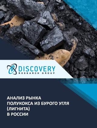 Маркетинговое исследование - Анализ рынка полукокса из бурого угля (лигнита) в России