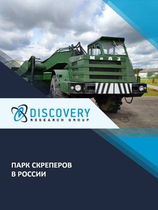 Маркетинговое исследование - Парк скреперов в России