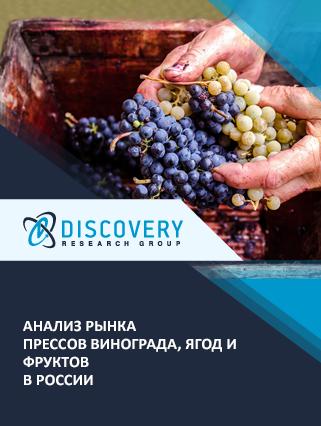Маркетинговое исследование - Анализ рынка прессов винограда, ягод и фруктов в России