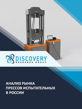 Маркетинговое исследование - Анализ рынка прессов испытательных в России