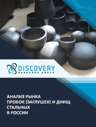 Маркетинговое исследование - Анализ рынка пробок (заглушек) и днищ стальных в России