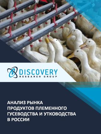 Маркетинговое исследование - Анализ рынка продуктов племенного гусеводства и утководства в России