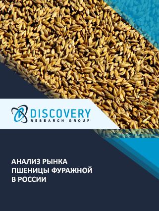 Маркетинговое исследование - Анализ рынка пшеницы фуражной в России