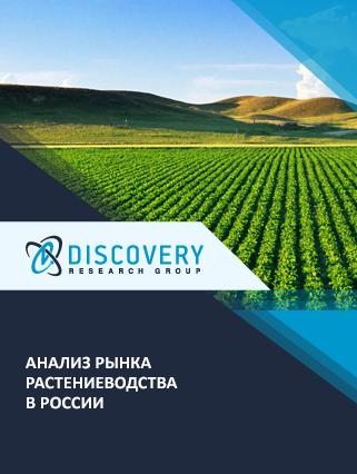 Маркетинговое исследование - Анализ рынка растениеводства в России