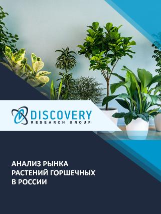 Маркетинговое исследование - Анализ рынка растений горшечных в России