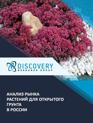 Маркетинговое исследование - Анализ рынка растений для открытого грунта в России