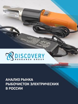 Маркетинговое исследование - Анализ рынка рыбочисток электрических в России
