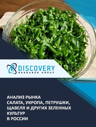 Маркетинговое исследование - Анализ рынка салата, укропа, петрушки, щавеля и других зеленных культур в России