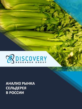 Маркетинговое исследование - Анализ рынка сельдерея в России