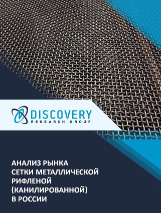 Маркетинговое исследование - Анализ рынка сетки металлической рифленой (канилированной) в России