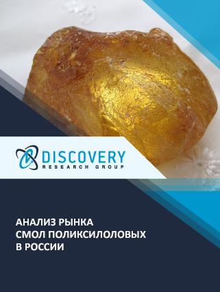 Маркетинговое исследование - Анализ рынка смол поликсилоловых в России