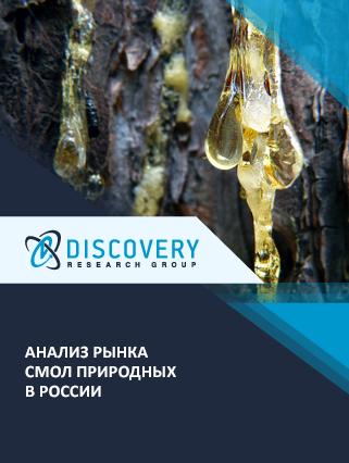 Маркетинговое исследование - Анализ рынка смол природных в России